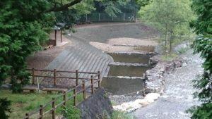 松阪森林公園親水公園