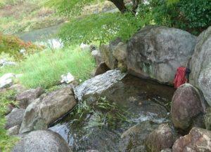鈴の森公園ビオトープ