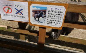 大内山動物園