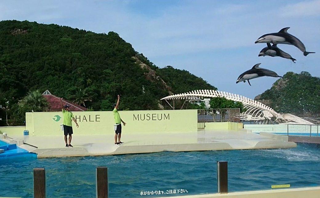 太地クジラ浜公園