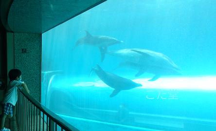 クジラ浜公園