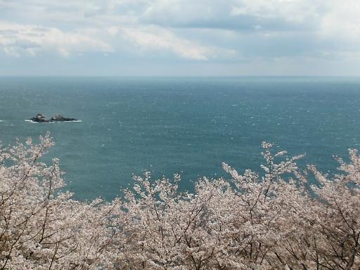 熊野鬼ヶ城鬼の見晴台
