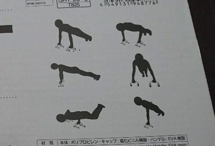 ダイソートレーニング